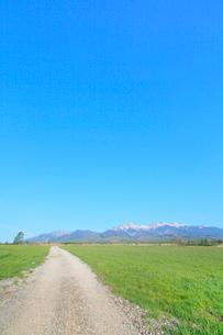草原に道と八ヶ岳の写真素材 [FYI02084648]