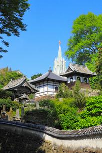 教会とお寺のある風景 の写真素材 [FYI02084709]