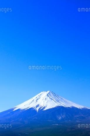 河口湖より富士山の写真素材 [FYI02084721]