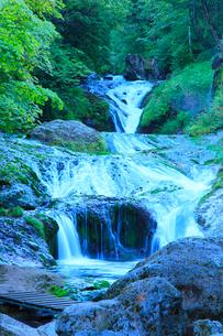 おしどり隠しの滝と新緑の写真素材 [FYI02084783]