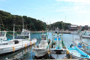 大王崎 波切漁港の写真素材 [FYI02084810]