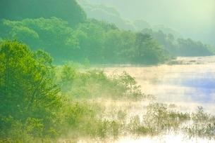 新緑の裏磐梯 秋元湖の朝霧の写真素材 [FYI02085016]