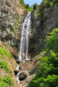 白山スーパー林道・ふくべの滝の写真素材 [FYI02085126]