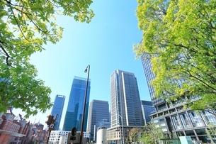 東京駅と丸の内ビル群に新緑の写真素材 [FYI02085130]