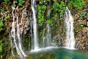 吾妻山地 新緑の幕滝の写真素材 [FYI02085143]