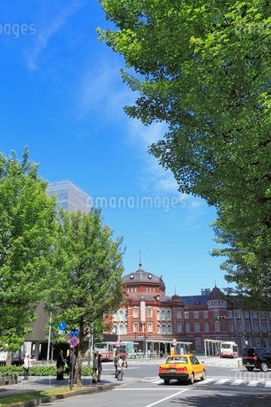 東京駅と新緑の写真素材 [FYI02085204]