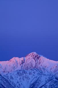 北アルプス五竜岳 冬の朝焼けの写真素材 [FYI02085251]