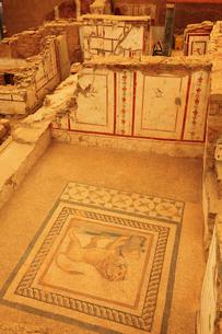 エフェス遺跡 丘の上の住宅のモザイク画の写真素材 [FYI02085291]