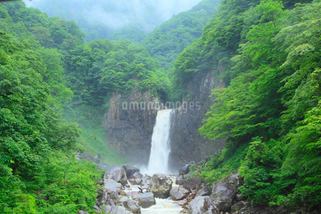 新緑の苗名滝の写真素材 [FYI02085431]