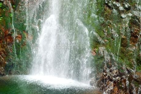 吾妻山地 新緑の幕滝の写真素材 [FYI02085432]