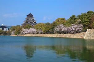 広島城とサクラの写真素材 [FYI02085472]