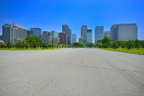 新緑の皇居前広場と丸の内ビル群の写真素材 [FYI02085611]