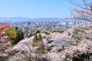 八坂の塔とサクラに京都市街の写真素材 [FYI02085796]