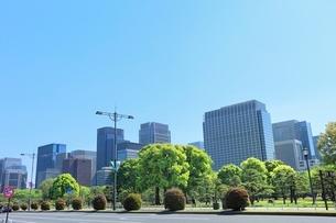 丸の内ビル群と新緑の写真素材 [FYI02085814]