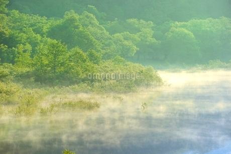 新緑の裏磐梯 秋元湖の朝霧の写真素材 [FYI02085842]