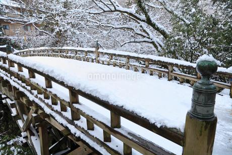 雪化粧の山中温泉・こおろぎ橋の写真素材 [FYI02086026]