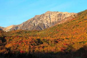 栂池自然園 紅葉と白馬岳の写真素材 [FYI02086102]