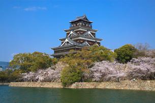 広島城とサクラの写真素材 [FYI02086237]