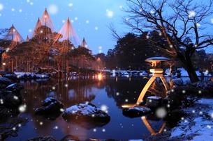 雪降る兼六園ライトアップの写真素材 [FYI02086416]