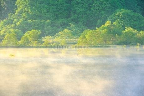 新緑の裏磐梯 秋元湖の朝霧の写真素材 [FYI02086442]