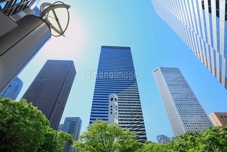 新宿副都心のビル群と新緑に太陽の写真素材 [FYI02086531]
