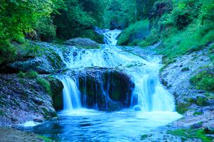 おしどり隠しの滝と新緑の写真素材 [FYI02086585]