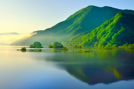 新緑の裏磐梯 秋元湖の朝霧の写真素材 [FYI02086636]