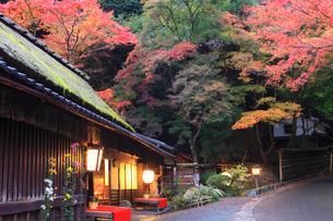 嵯峨野・愛宕街道 鮎茶屋の秋の写真素材 [FYI02086686]