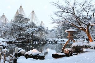雪降る兼六園 ことじ灯籠の写真素材 [FYI02086783]