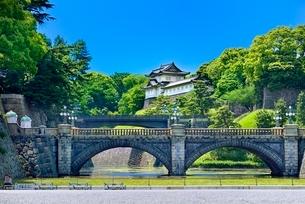 新緑の皇居二重橋と伏見櫓の写真素材 [FYI02086814]