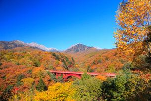 清里高原 紅葉の東沢橋と八ヶ岳の写真素材 [FYI02087061]