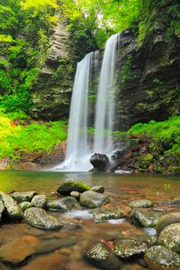 夫婦滝と新緑の写真素材 [FYI02087131]