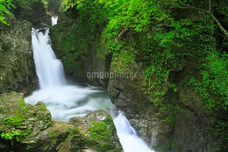 厳立峡 三ツ滝と流れの写真素材 [FYI02087224]
