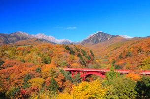 清里高原 紅葉の東沢橋と八ヶ岳の写真素材 [FYI02087239]