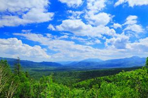 三国峠から望む新緑の山並の写真素材 [FYI02087278]