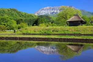 茅葺小屋と新緑の大山の写真素材 [FYI02087498]