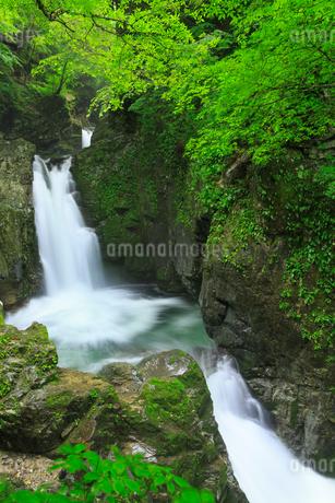 厳立峡 三ツ滝と流れの写真素材 [FYI02087500]