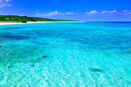 沖縄波照間島 ニシ浜と海の写真素材 [FYI02087517]