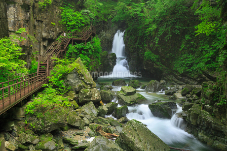 緑の厳立峡 三ツ滝と遊歩道の写真素材 [FYI02087521]