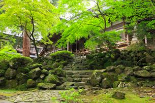 新緑の永平寺の写真素材 [FYI02087527]