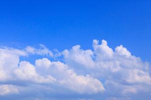 入道雲と青空の写真素材 [FYI02087552]