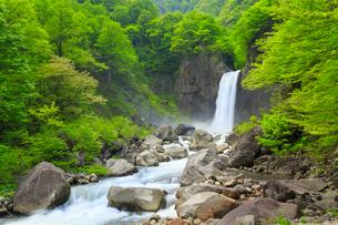 新緑の苗名滝の写真素材 [FYI02087563]