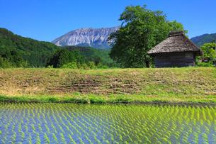 茅葺小屋と新緑の大山の写真素材 [FYI02087617]