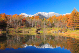 池に映る新雪の八ヶ岳と紅葉の写真素材 [FYI02087640]