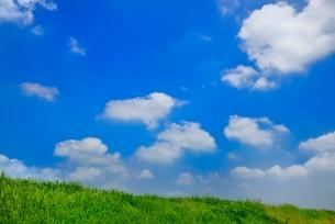 緑の土手と青空に雲の写真素材 [FYI02087757]