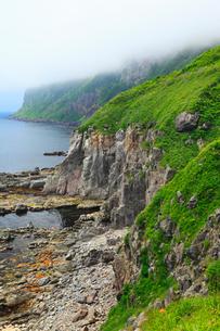 立待岬の絶壁と津軽海峡の写真素材 [FYI02087860]