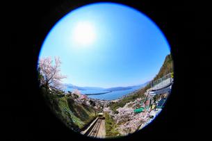 傘松公園のサクラと天橋立に太陽 宮津湾と阿蘇海の写真素材 [FYI02087884]