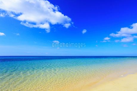 沖縄西表島 南風見田の浜と海の写真素材 [FYI02087936]