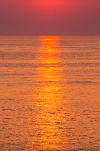 安乗岬 朝光に輝く海面の写真素材 [FYI02087982]