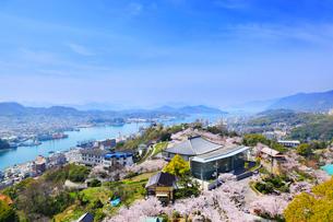 千光寺公園とサクラ 市立美術館と尾道市街の写真素材 [FYI02088002]